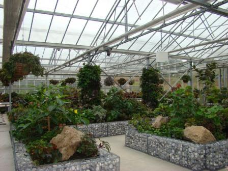 Les jardins suspendus du havre afabego for Jardins suspendus le havre horaires