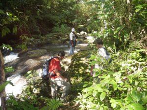 Ambodiforaha river to Masoala